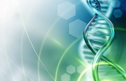 Biochimie et sciences naturelles (bases)